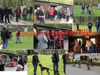 gallery/fruehjahrspruefung_april_12/pruefung.thumbnail.jpg